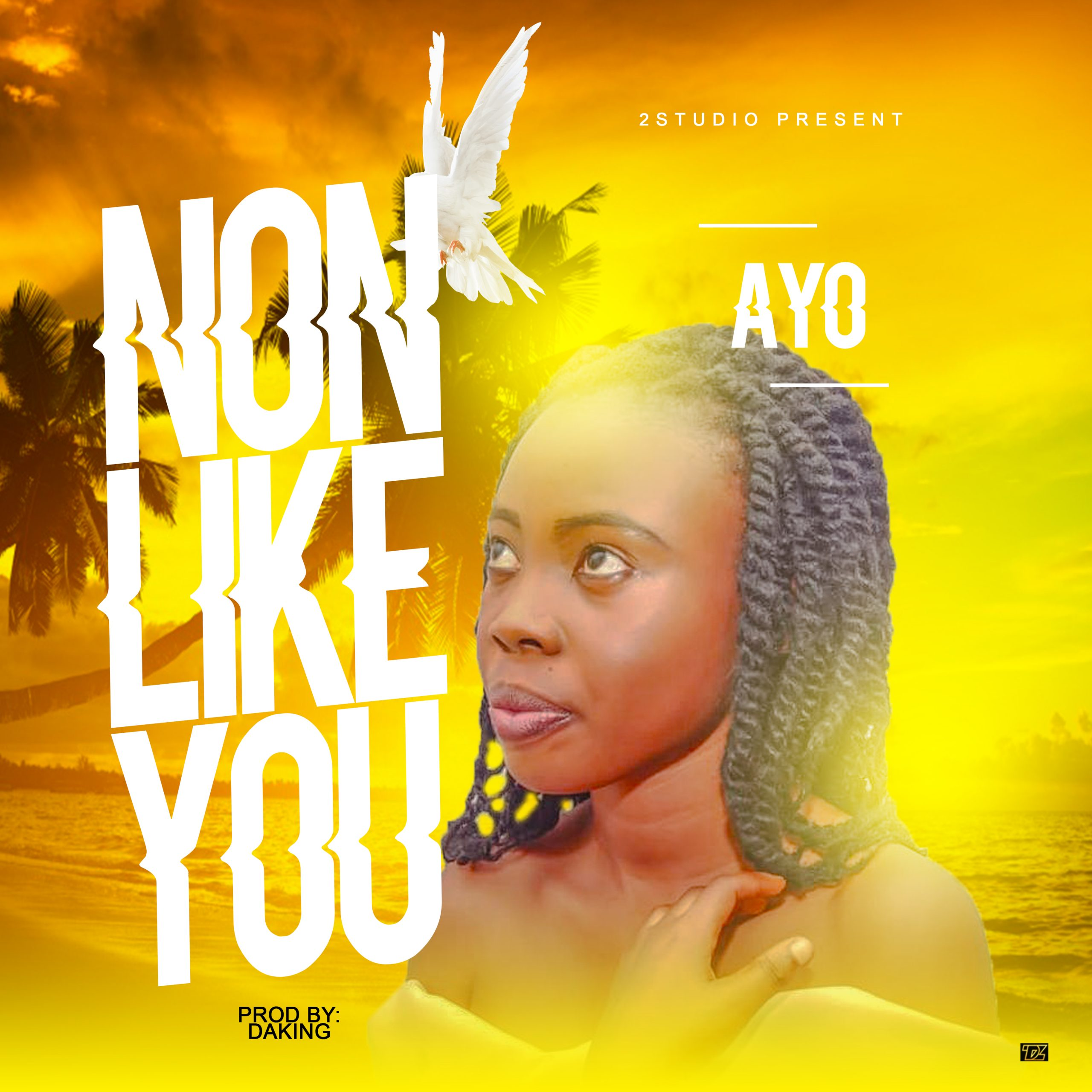 (Music) Ayo_Non like You (Prod by Daking 1 759