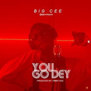 Big Cee - YOU GO DEY 1 989